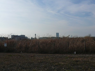空き地の奥のランドマークとマリンタワー