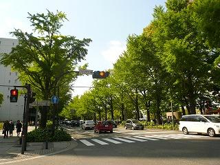 マリンタワー前の道1