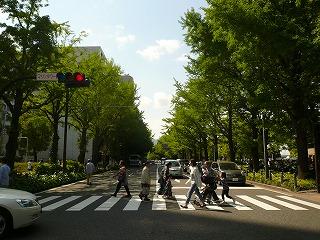 マリンタワー前の道2