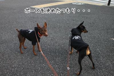 2013_02_20_9999_25.jpg