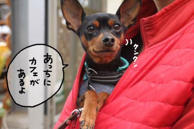 2013_03_03_9999_24.jpg