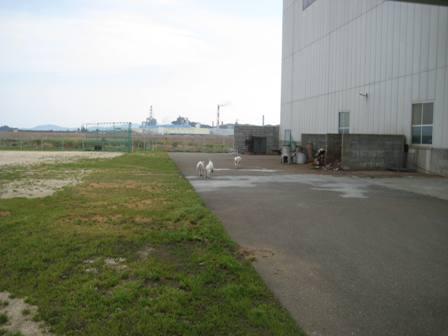 四国旅 阿南工場2