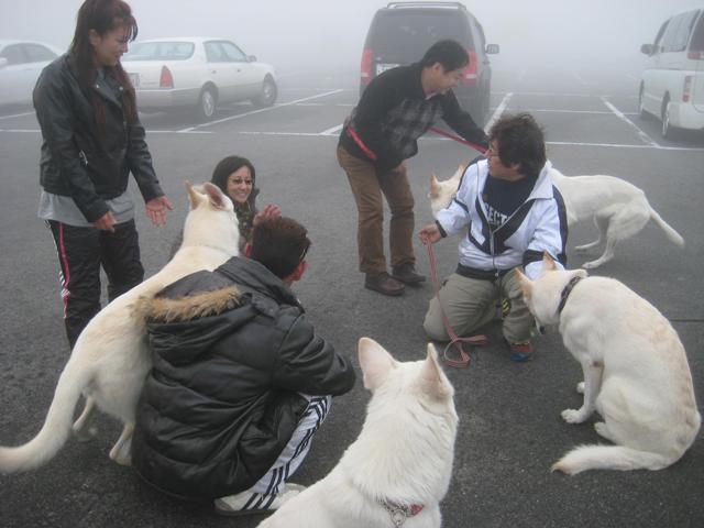 霧が峰 4