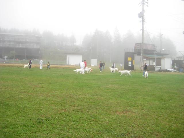 霧が峰 28