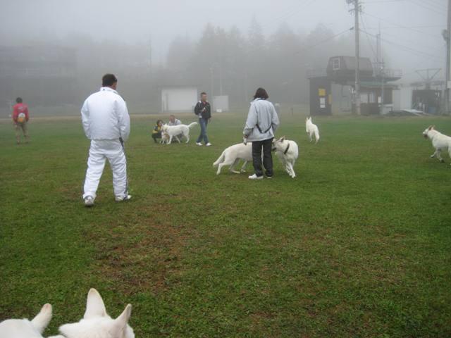 霧が峰 30