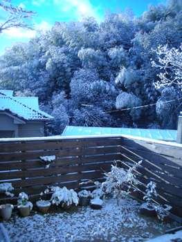 2009  初雪