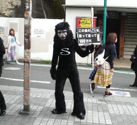 ストライドの猿