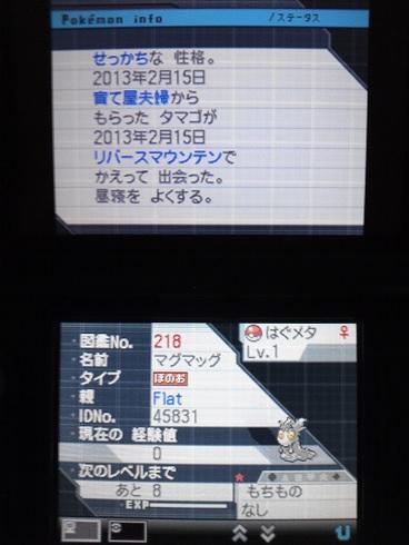 No.218 ★マグマッグ-2