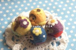 kororainbow2.jpg