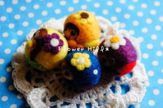 kororainbow3.jpg