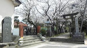 竹野保育園