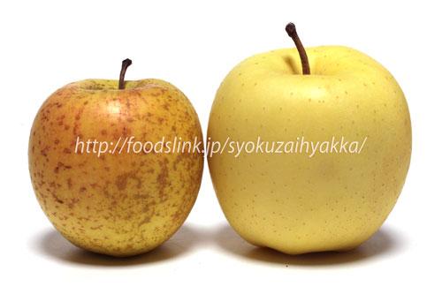 サン金星リンゴ