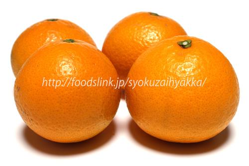 清美オレンジ