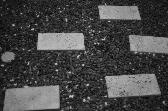 庭石をモノクロで