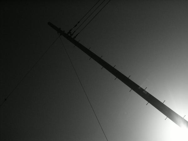 電柱 2010.3.11