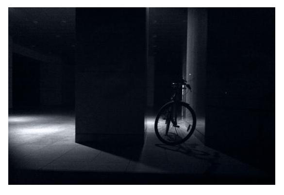 cycle in the dark