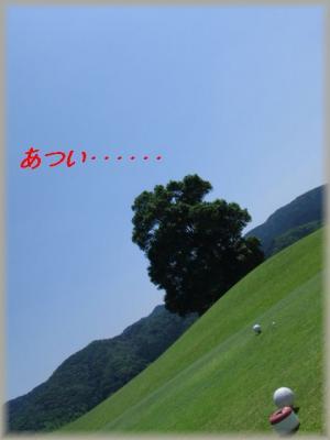 CIMG1230_20110711110135.jpg