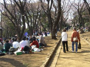 asukayamapark_convert_20110403193737.jpg