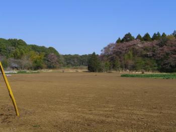 satoyama2_convert_20110417202644.jpg