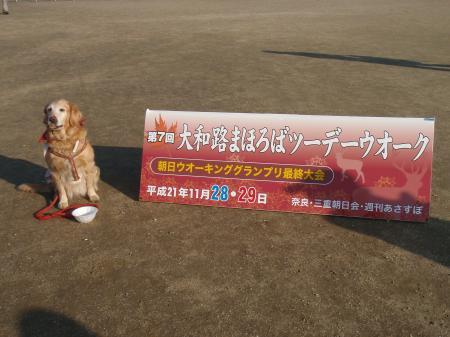 螟ァ蜥瑚キッ縺セ縺サ繧阪・繝・・繝・・繧ヲ繧ェ繝シ繧ッ+004_convert_20091129191745