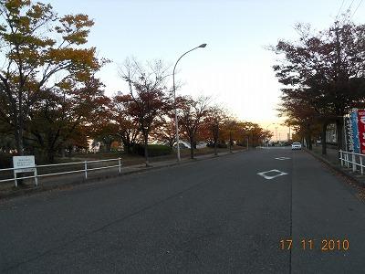 DSCN4439.jpg