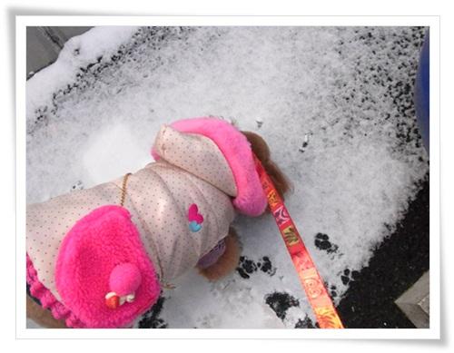 やっぱり雪が好き・3
