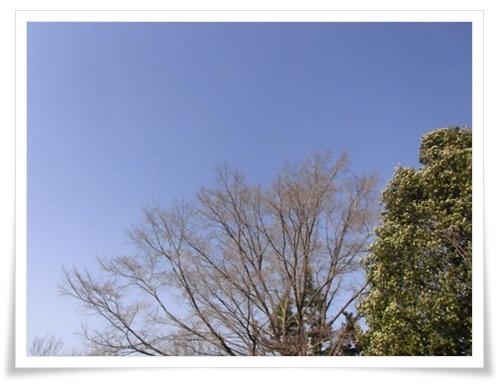 震災後の青空