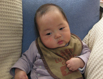 20091229hayate.jpg