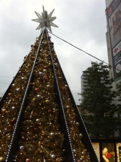 クリスマスツリー10.12.22