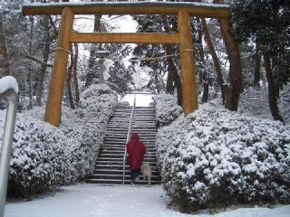 雪の階段9586