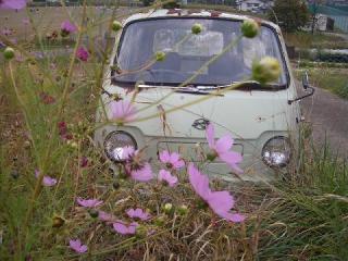 旧車8534