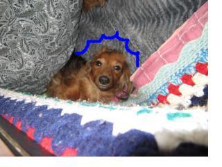 snap_fumi777_20101422101.jpg