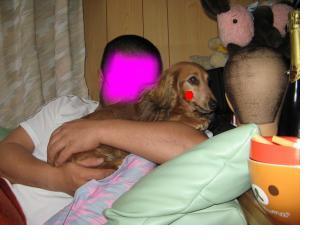 snap_fumi777_20102522355.jpg
