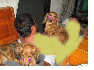 snap_fumi777_201083215124.jpg