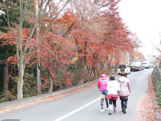2009_1129戸田別館 0003