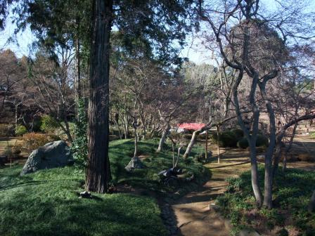 1-6庭園