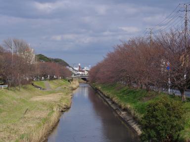 4-3川沿いの風景