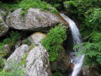 水 遠山郷・下栗-大野間 富士浅間社の沢 100608_cIMG_1182