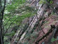 歴 虚空蔵山岩屋神社本殿~山頂間の岩壁 101001_cIMG_3654