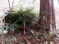 遺 戸隠奥社 九頭竜社向かい尾根の巨杉と岩 101107_cIMG_5203