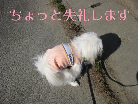 IMG_0718-2.jpg
