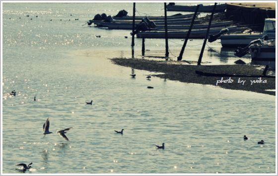 河口0211