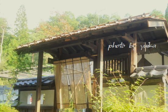 古民家カフェ816-1