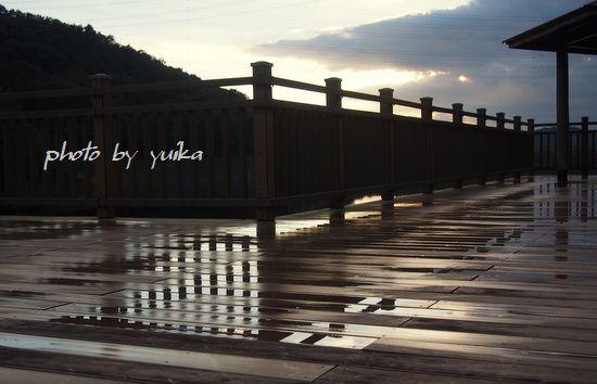 雨上がり1009-B