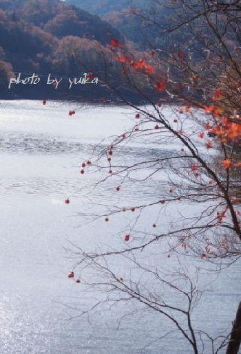 三河湖1124-1