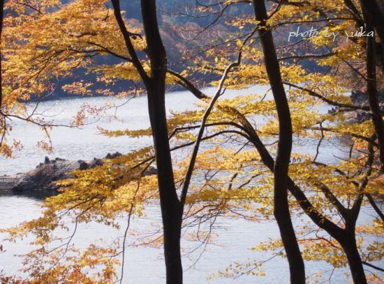 三河湖1124-2