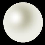 真珠(ホワイト)