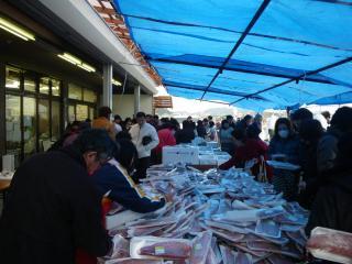 小鉢さんの鮮魚のテント