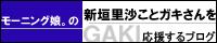 モーニング娘。の新垣里沙ことガキさんを応援するブログ