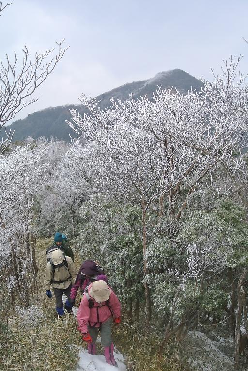 nasugahara012.jpg